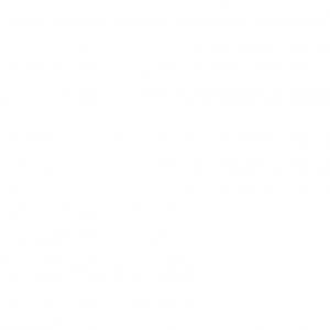 trevisana_logo-01